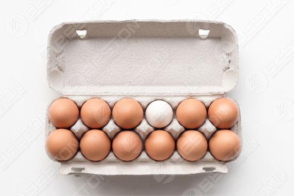 12 œufs dans une boîte