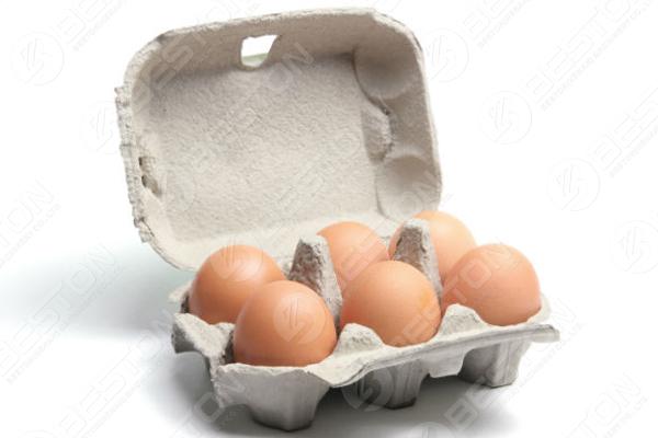 6 œufs dans une boîte