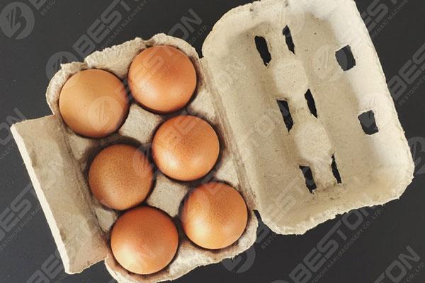 Boîte de 6 œufs