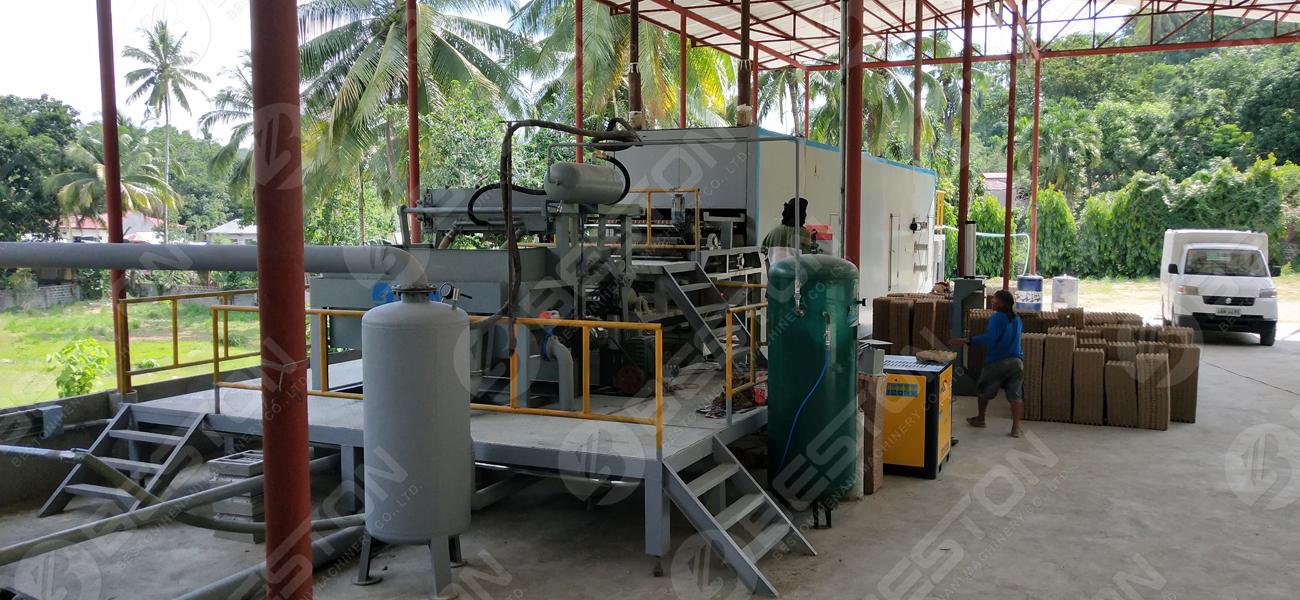 Plateau d'oeufs faisant la machine à vendre