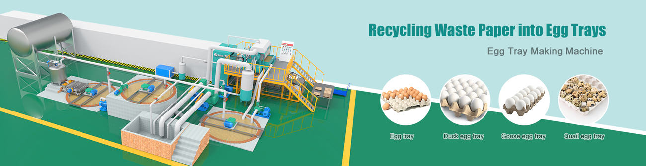 Automatic Pulp Egg Tray Manufacturing Machine