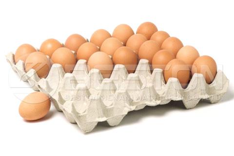 Bandeja de huevos