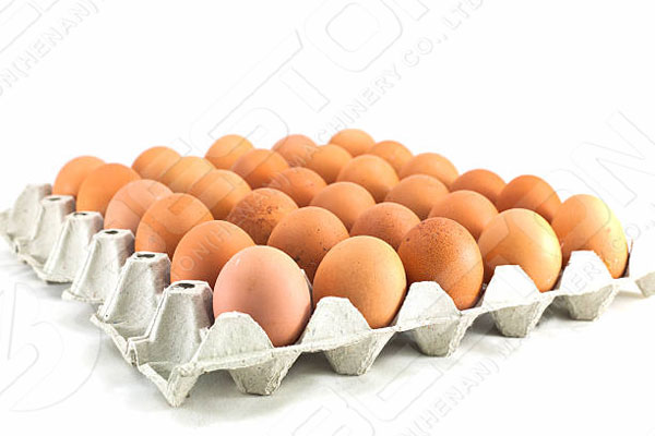 30 Count Egg Tray Made By China Egg Tray Making Machine