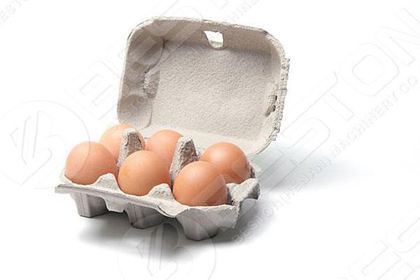 6 pcs Egg Carton Made By China Egg Tray Making Machine