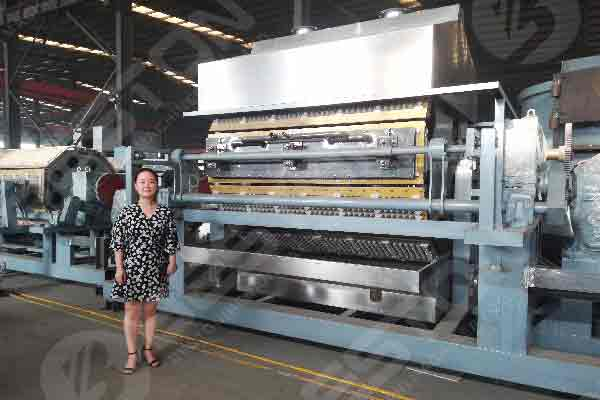 Automatic Design Egg Tray Manufacturing Plant
