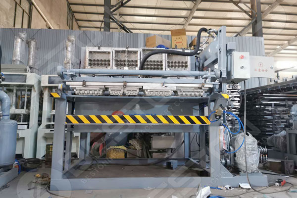 BTF1-4 Egg Carton Plant From Beston China Group