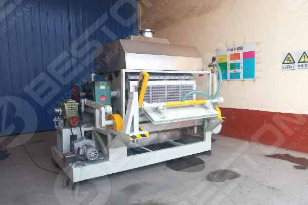 Easy to Operate Egg Tray Manufacturing Equipment