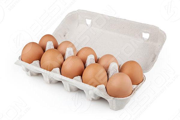 Caja de huevos de 10 piezas