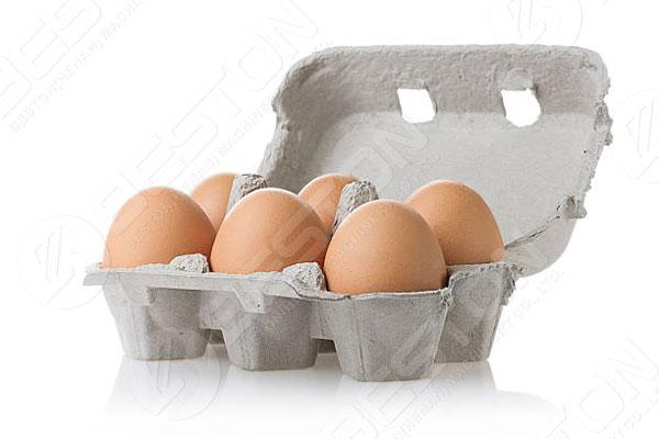 Cartón de huevos de 6 piezas