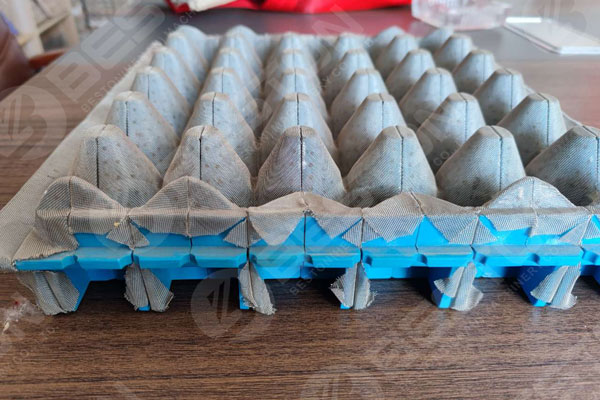 Beston Plastic Mold for Fruit TrayMachine