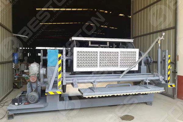 Paper Fruit Tray Making Machine