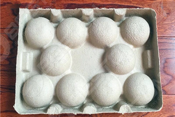 Paper Pulp Fruit Tray