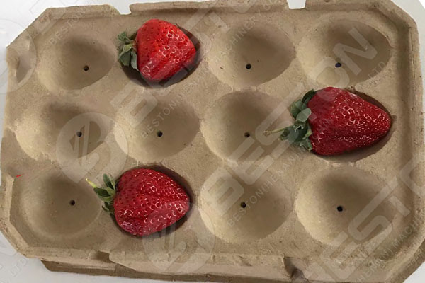 Strawberries on Fruit Tray