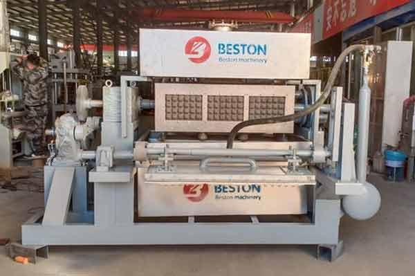 Máquina para fabricar bandejas de huevos para la venta en Botswana